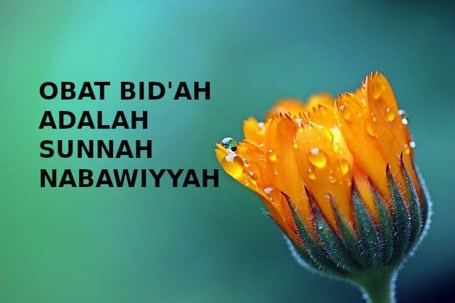 Obat Bid'ah Adalah Sunnah